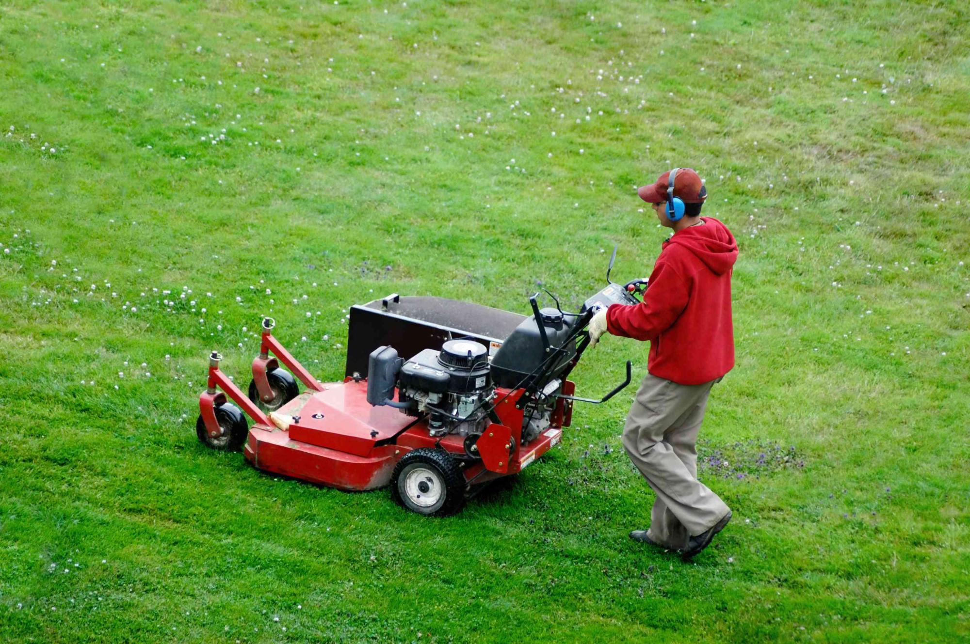 Lawn Care, Landscape Design, Lawn Care Specialists- , Ontario